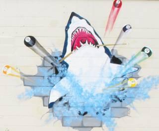 Pool Shark Billiards Inc Naplesplus Naples News Jobs