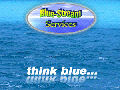Blue-Stream Services